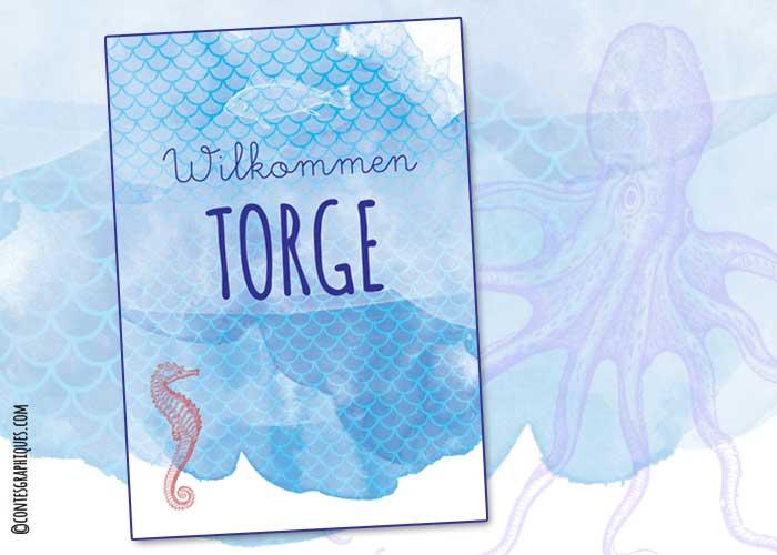 Contes-graphiques-Torge-01