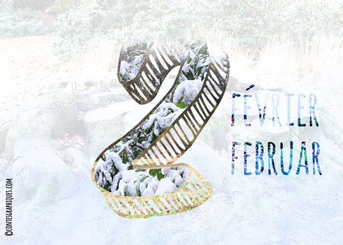 Février | Februar