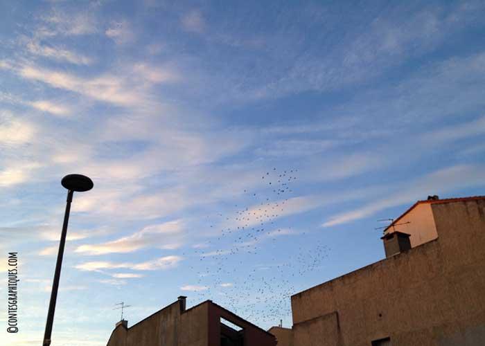 Contes-graphiques-lastdays-05