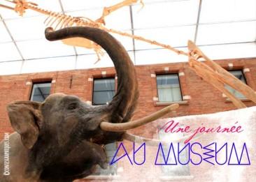 Au Musée | Im Museum